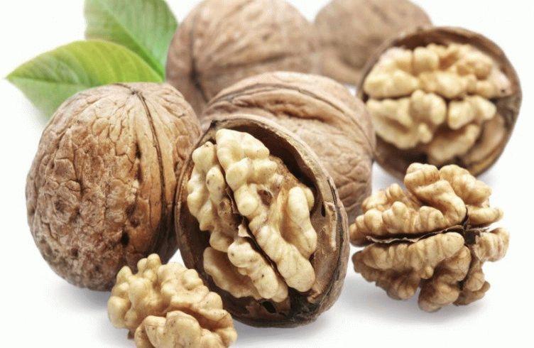 Как вырастить грецкий орех из ореха дома и на даче – посадка и уход