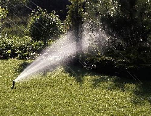 Система автоматического полива в саду: как правильно её выбрать?