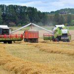 Почти в 1,5 раза выросла урожайность зерновых в 2021 году