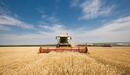 Современная агрономия — урожай и его продажа