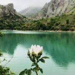 Изумрудное озеро стало коричневой лужей. Засуха лишает Крым красот природы?