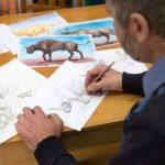 В пещере «Таврида» нашли кости двурогого носорога и рог антилопы