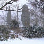 В Севастополь второй раз за зиму пришёл снег