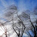 МЧС Крыма прогнозирует сильный ветер на полуострове в среду и четверг