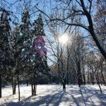 Под Феодосией автобус с шестью пассажирами застрял в снежных заносах