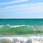 Черное море соленость