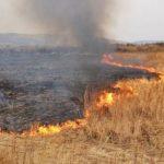 В Крыму под утро горело поле пшеницы