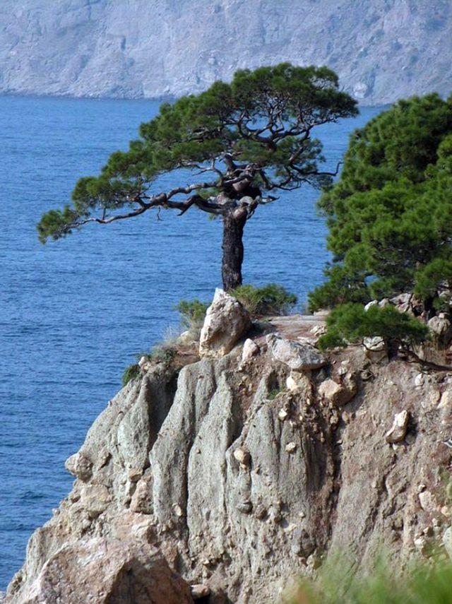 Мыс Айя - удивительное место Крымского побережья