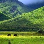 Байдарский перевал и его живописные окрестности