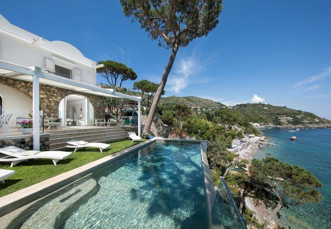 Жилая и коммерческая недвижимость на Кипре
