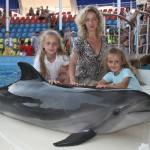 Интервью с дельфином — как стать тренером дельфинов?