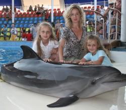 Выступление дельфинов в дельфинарии