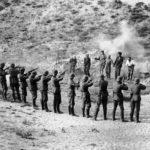 На Максимовой даче нашли останки расстрелянных нацистами горожан