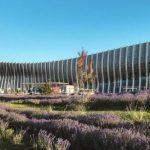 Аэропорт «Симферополь» обслужил рекордное число пассажиров за сутки
