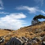 Поход к Демерджи — отдыхаем в Крыму активно