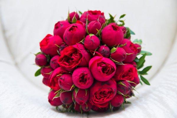Цветы и их значения