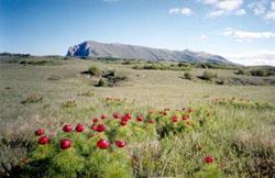 Крым, горный массив Чатырдаг