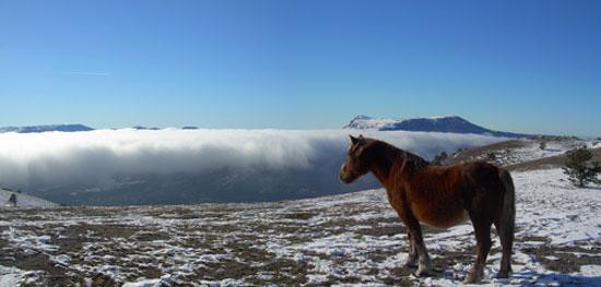Встретить новый год в Крымских горах