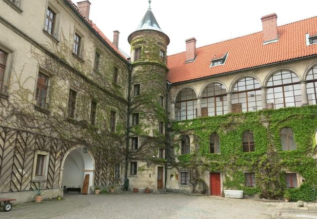 Оформление приглашения, страховки и анкеты для виз. Туристическая страховка в Чехию