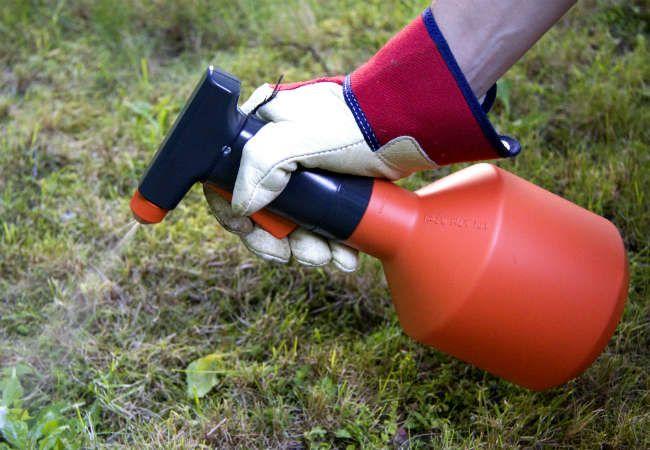 Застосування гербіцидів —  Аптека Садівника
