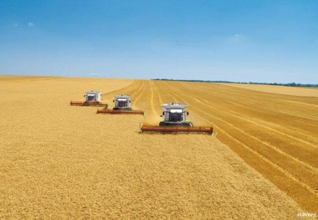 Як підвищити врожайність на поле?
