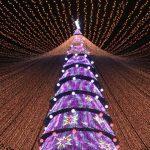 Высокотехнологичную новогоднюю ёлку установили в Казани