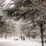 В Крыму ожидается аномальное похолодание до 13 градусов мороза