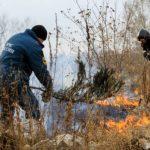 Под Бахчисараем огнеборцы пять часов тушили лесной пожар