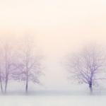 После Рождества на территорию Крыма начнет поступать холодный воздух