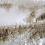 Снова снег и гололёд: погода в Крыму 24 февраля
