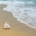 Развожаев поручил проверить пляжи, которые находятся на балансе инвесторов