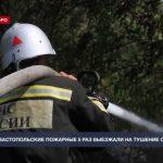 За сутки севастопольские пожарные 5 раз выезжали на тушение сухой травы