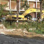 Парк Фороса от застройки вышли спасать местные жители