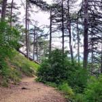 Отдых в Крыму — пешеходные маршруты